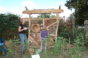Unsere ehemalige FÖJ-lerin Isabell beim Bau eines Insektenhotels