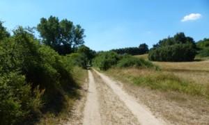 Wanderweg Obere Seen