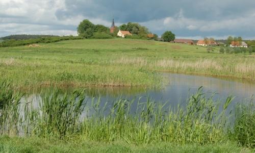Salzwiese Sülten1 Wanderung auf den Spuren der Eiszeit   Vom Roten See zum NSG Binnensalzwiese Sülten