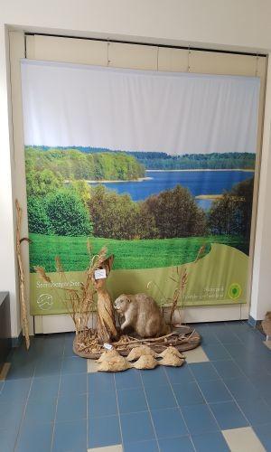 Foyer im Naturparkzentrum
