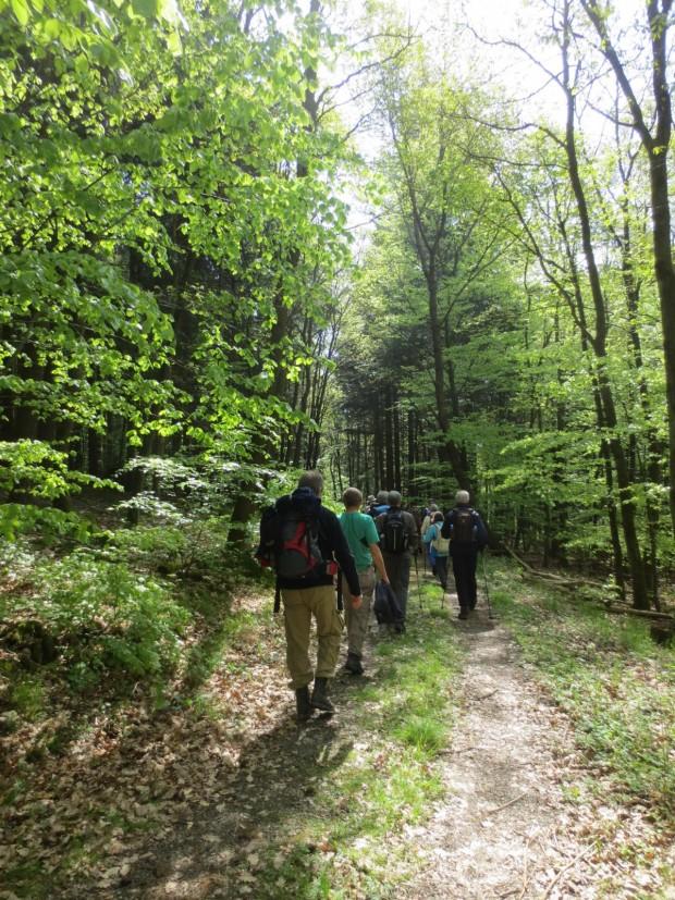 K1600 Wanderer 620x827 Erste Wochenendwanderung des Naturpark Taunus vom 23. bis 24. September