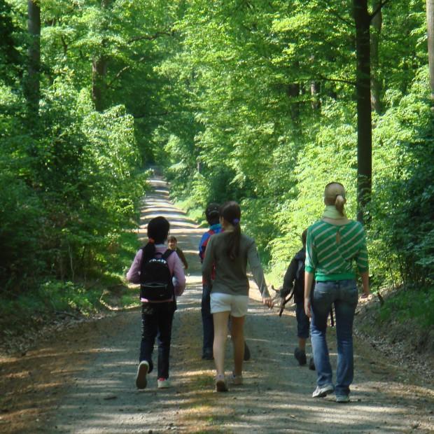 Kinder im Wald 620x620 Wochenendwanderung von Kelkheim nach Kronberg