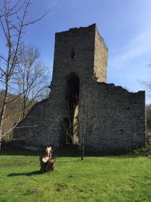 Landsteiner Kirchenruine (2)