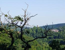 Panorama Weilrod Altweilnau Burg