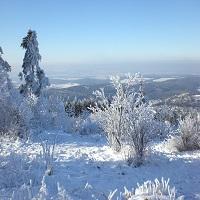 Winterlandschaft 02 2020 01