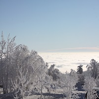 Winterlandschaft 02 2020