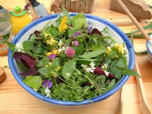 Wildkräutersalat - frisch und gesund