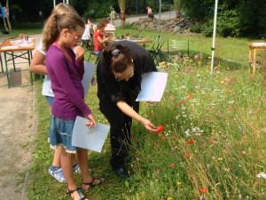Naturführerin Bettina Thime zeigt den jungen Künstlern Blüten mit Insekten, BA Beate Graumann