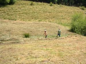 Mitarbeiter der Naturparkverwaltung  bei der Wiesenpflege