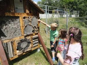 Insektenhotel_Schule Leutenberg_BA Doris Ziermann