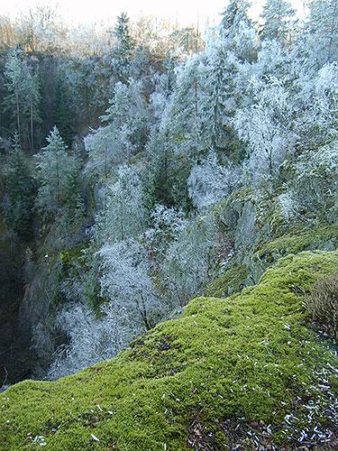 Oertelsbruch Winter 02 bearbeitet Ausflugstipp im November: Vornikoläusliche Wanderung