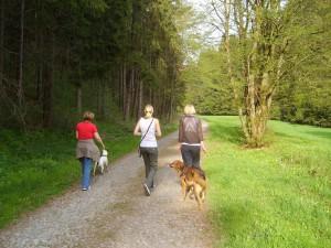 Eine Wanderung im Naturpark hat zu jeder Jahreszeit ihren Reiz_BA Beate Graumann