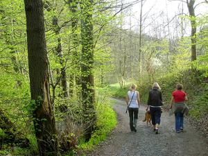 S6000233 300x225 Veranstaltungen im Naturpark im Monat Mai