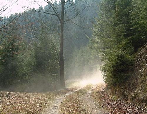 bild22 Ausflugstipp für den Dezember