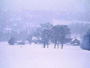 Winterstimmung im Naturpark, BA Beate Graumann