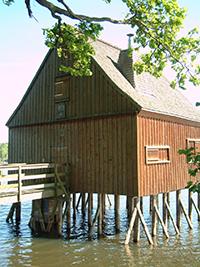 fisch3 Fisch  und Wildwochen im Thüringer Land der Tausend Teiche ab 29.09.18