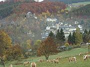Um die Stadt Gräfenthal mit ihren blauen Schieferdächern führt ein Rundweg des Schieferpfades, BA Beate Graumann
