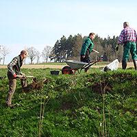 Vorbereitung der Baumpflanzung, Foto Archiv Grundschule Ruppersdorf