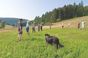 sense2 300x200 Grünes Band aktiv – Veranstaltungen im Naturpark