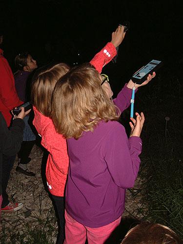 textbild beitrag3 Batnight in Lehesten – Fledermausnacht im Schieferpark