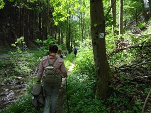 tipp21 300x225 Veranstaltungen im Naturpark im Monat Mai