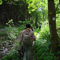 Wanderung auf dem Bienenpfad, BA Beate Graumann