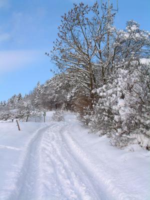 winter1 300x400 Veranstaltungen im Naturpark im Monat Dezember