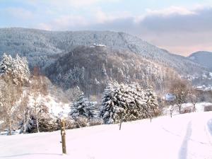 winter2 300x225 Veranstaltungen im Naturpark im Monat Februar
