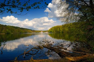 """(c) Naturpark Barnims_2013_Obersee_bei_Lanke_Liebke"