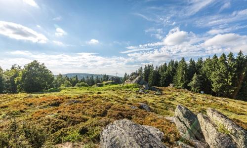 01 2 Bild Oberpfälzer Wald Weiter Blick über das Waldmeer am Burgstall Wildstein Foto Thomas Kujat Naturpark Oberpfälzer Wald