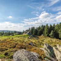 Oberpfälzer Wald - Weiter Blick über das Waldmeer am Burgstall Wildstein ©  Thomas Kujat