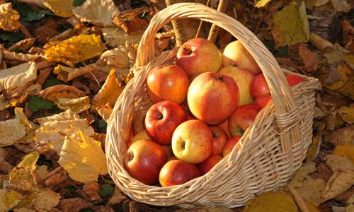 074 ps 2 skalb Streuobstwiesen Apfelsaft