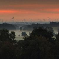 Windkrafträder im Frühnebel - Copyright: VDN/Oliver Detgen