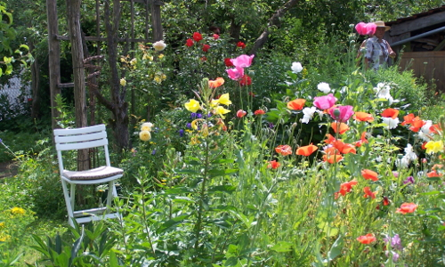 100 0224b Biologische Vielfalt  Naturschutz beginnt im Garten