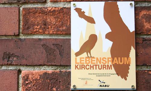Kirchgänger   Lebensräume für Turmfalke, Schleiereule und Co.