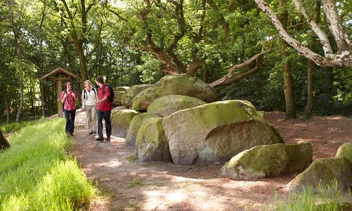 "15 Grosssteingraeber Huemmling.1024b ""Neuer in Niedersachsen"" – Hümmling offiziell zum Naturpark erklärt"