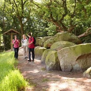 Großsteingräber©Naturpark Hümmling