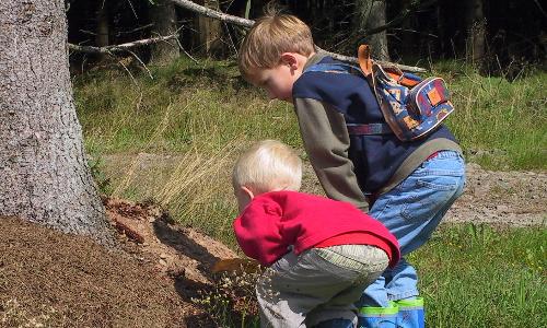 177 7705 IMGb Mit Kind und Kegel – Unterwegs in Naturparken
