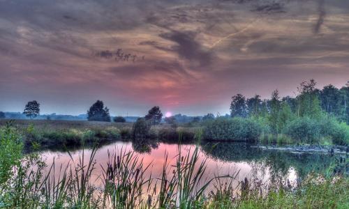 2000112 3 4 tm npb Schaurig schön – Moorlandschaften in Naturparken