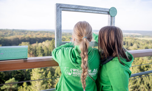 2019 09 23 BWP HRS Hanstedt 031b Baumwipfelpfade in Naturparken
