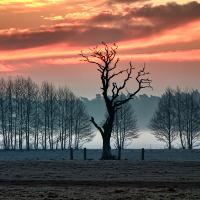 Es wird ein schöner Tag © VDN/B. Tanneberger