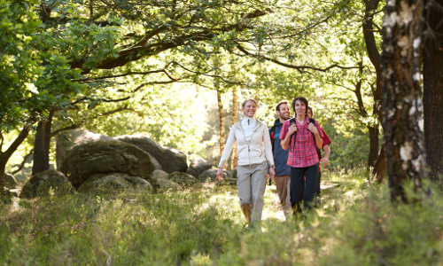"74 Wanderer Grosssteingraeber.1024b ""Neuer in Niedersachsen"" – Hümmling offiziell zum Naturpark erklärt"
