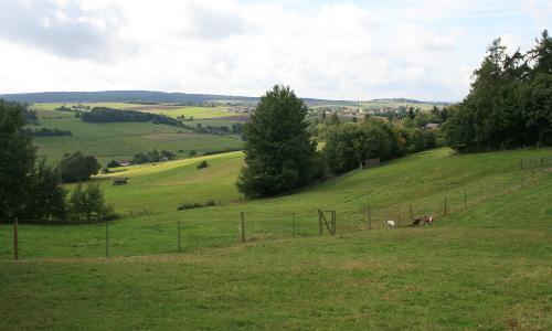 AR Weidengrund RObf Naturpark Kellerwald Edersee