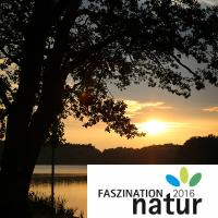 Abendstimmung_Fotograf-Anne Schwerin_beitragsbild mit logo