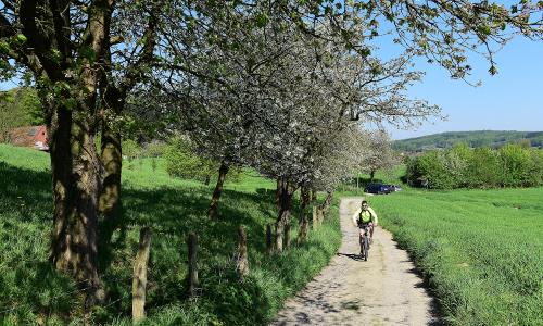 Aktiv im Naturpark beitrag Natur  und Geopark TERRA.vita