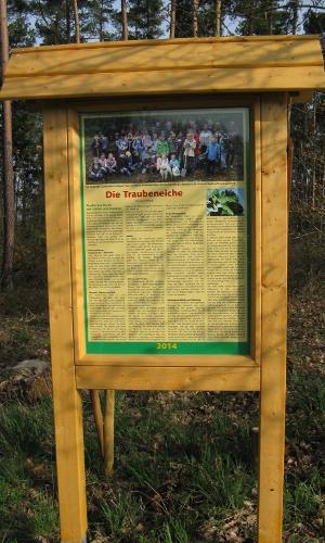 Allee Bäume des Jahres Jährliche Baumpflanzaktion mit Grundschulkindern Ursula Braunb Naturpark Nassau