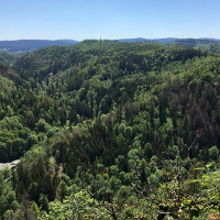 Aussichtspunkt König David  © Naturpark Frankenwald