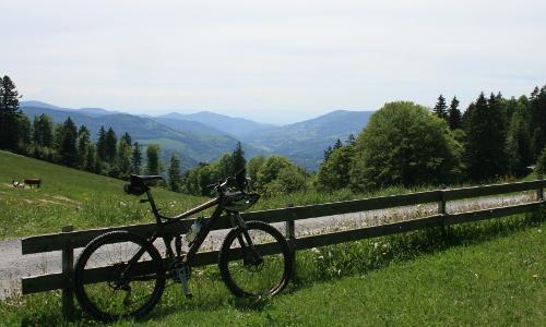 BBN1 Liesen Schwarzwald 12 292 B #NaturparkLust   Naturerleben in Zeiten von Corona