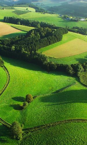 Ballonfahrtb Naturpark Arnsberger Wald