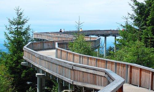 Bayrischer Wald 2 Waldwipfelweg bei St Englmar verkleinert Auf guten Wegen   Erlebnispfade in Naturparken